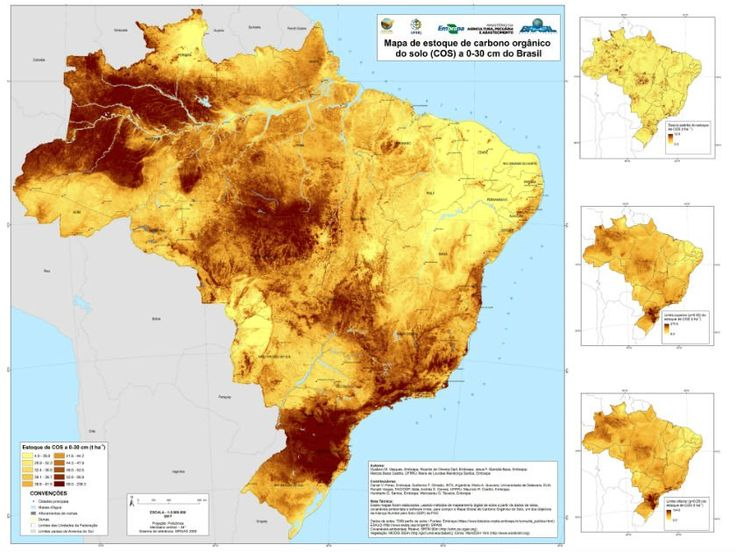 Mapa digital mostra maiores estoques de carbono do solo do Brasil