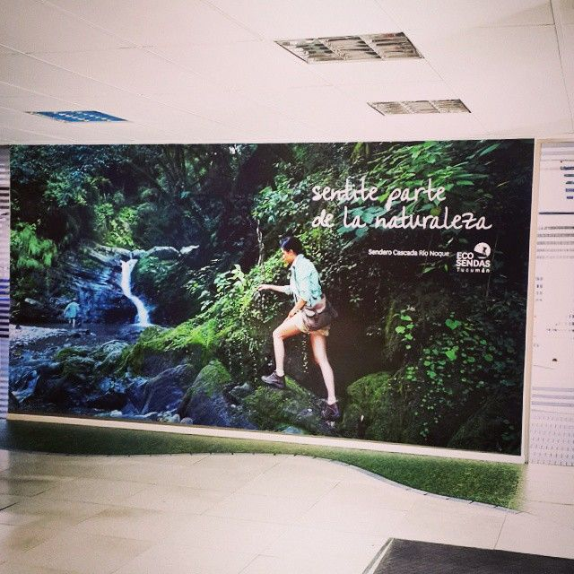 #diseño #ploteo #pared #piso #vinilo #tucuman