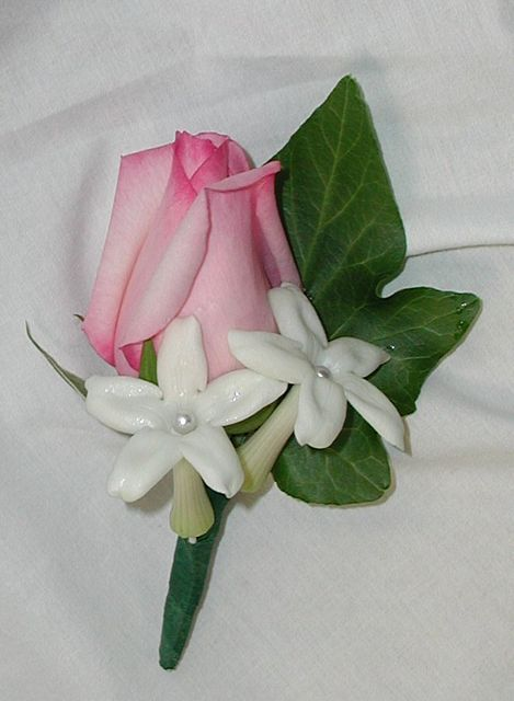 boutonniere, featuring pink rose with stephanotis accent: Boutonniere