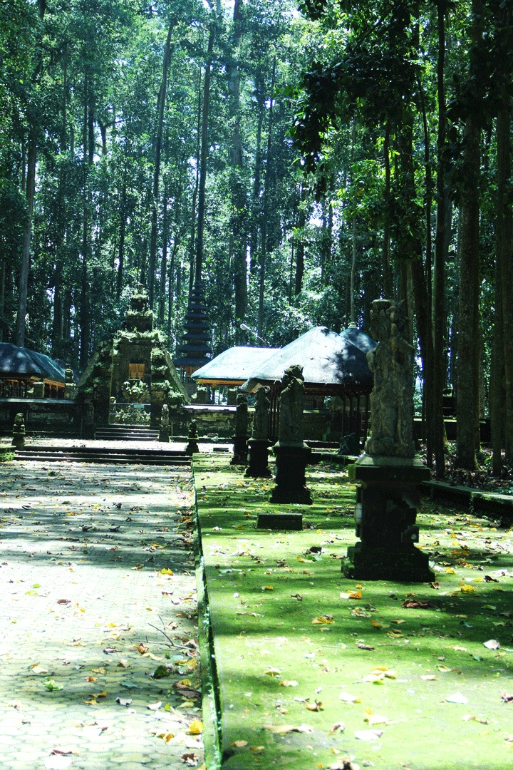 Sangeh monkey Temple