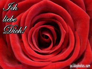 Liebe, Valentinstag. Kostenlose GrusskartenKostenlose KartenIch ...