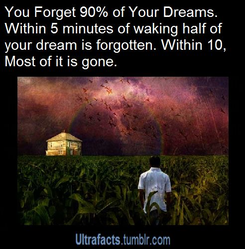 Facts about dreams. See more Ultrafacts