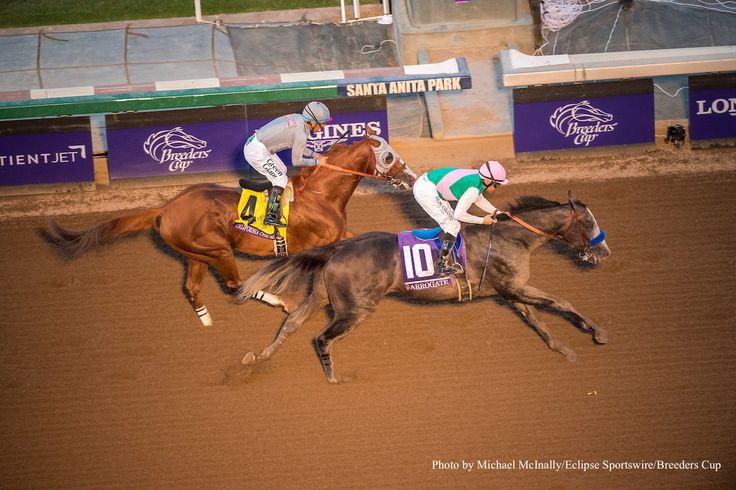 After six wins in a row, the world's richest active racehorse was defeated in the biggest race of his 2016 season. Juddmonte Farms' sophomore Arrogate nailed California Chrome by a half-length on the wire in the Breeders Cup Classic, taking home the winner's share of the $6 million prize and delivering a heartbreaking loss for …