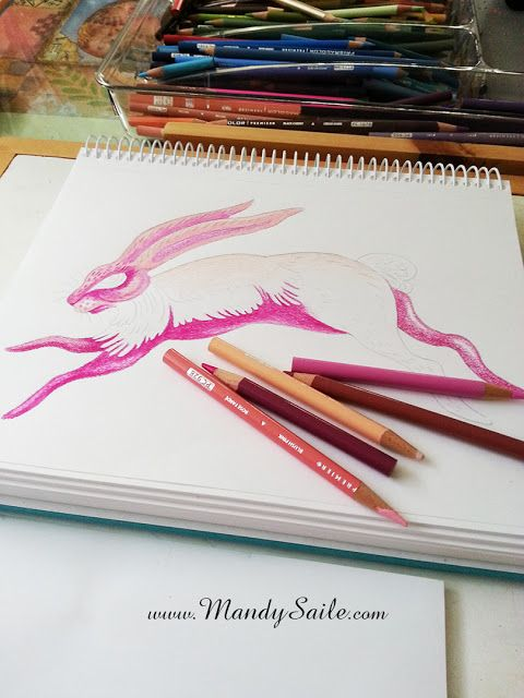 Mandy Saile - Creating Joyfully Whimsical Coloured Pencil Art Whiles Living With Happy House Rabbits: Starting With A Pink Bunny