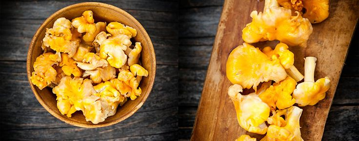 Chanterelle – Cooking without Limits