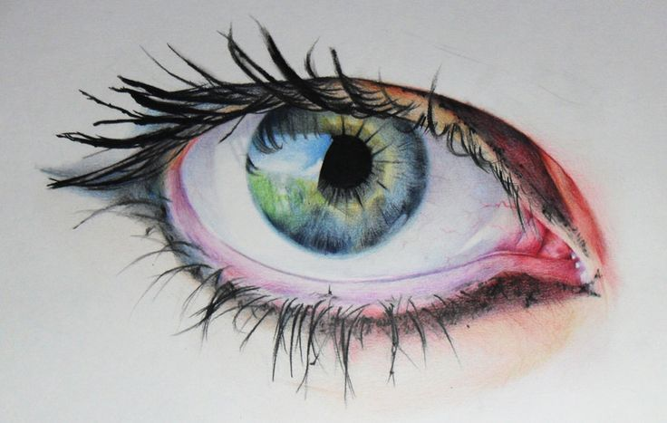 Eye illustration by Amy Robins