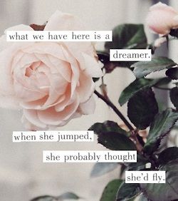 """""""What we have here is a dreamer, when she jumped, she probably thought she'd fly"""""""