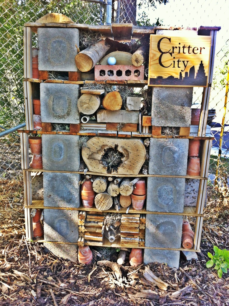 A constructed habitat for insects. Folks at the Texas