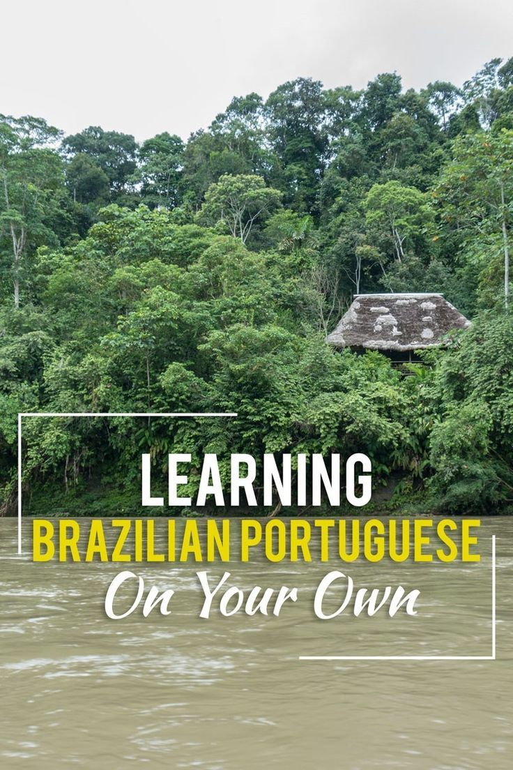 I love studying languages, so I figured why not try and learn Brazilian Portuguese?