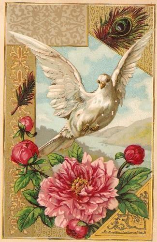 Victorian Trading Card (1880) | Dietrich Urich-Kayser | Flickr