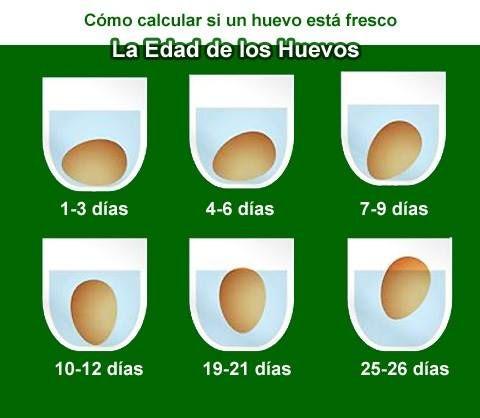 huevos frescos: Pincha en la Foto para Verlo Todo