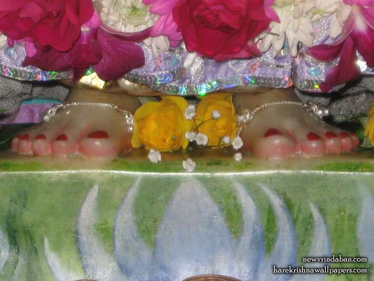 http://harekrishnawallpapers.com/sri-radha-feet-iskcon-new-vrindavan-wallpaper-001/