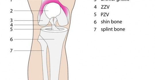 Information Regarding Iliotibial Band Syndrome (ITBS). For More Information See Metro Physio www.metrophysio.co.uk