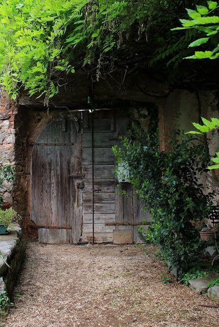 Alterazioni Viniliche - old door