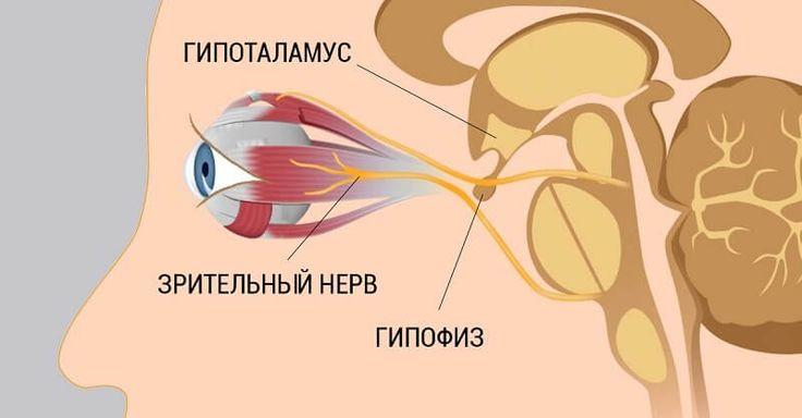 » 8 шагов к улучшению и восстановлению зрения. Работает, даже если ты носишь очки!Нескучно