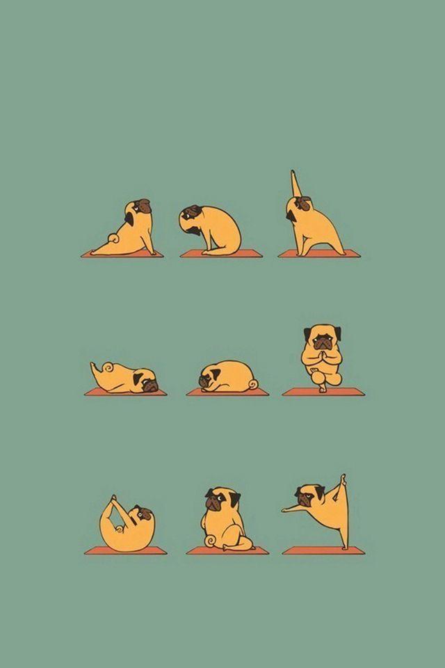 Funny Pug Doing Yoga  #iPhone #4s #wallpaper