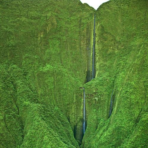 Honokohau Falls - Maui