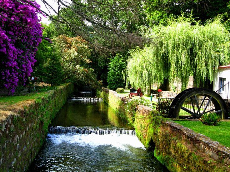 Susie L: Jardim D. Beatriz Canto - Furnas - Azores