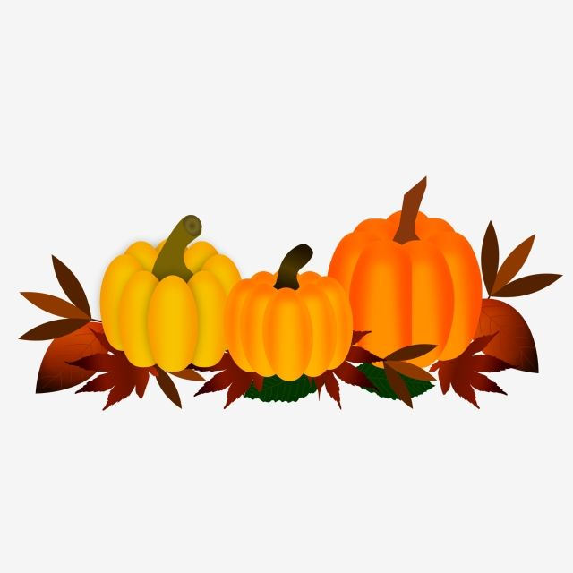 Pumpkin With Autumn Leaves Pumpkin Leaves Fall Png And Vector With Transparent Background For Free Download Watercolor Autumn Leaves Butterfly Art Drawing Fall Watercolor
