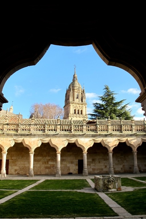 El patio de las escuelas menores- part of a courtyard within the University of Salamanca. Yes... I could see myself passing afternoons here :)