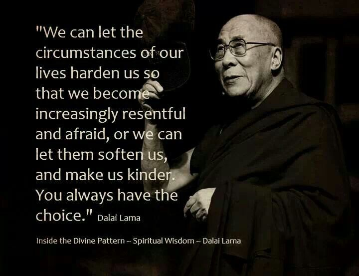12 QUOTES FROM THE DALAI LAMA – THE FIGHT AGAINST INNER ENEMY « WHOLEDUDE - WHOLE PLANET