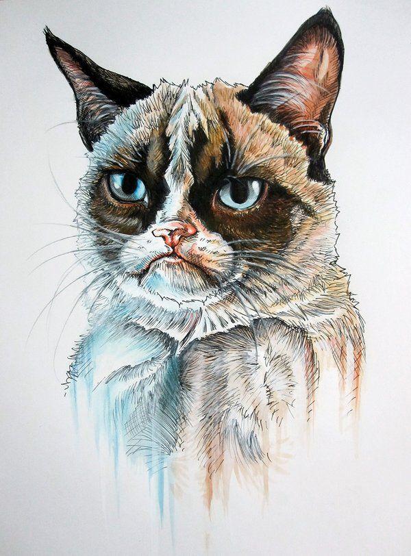 grumpy cat wedding invitations%0A This Tardar is grumpier than most other Tardars  Love it  Tard the Grumpy  Cat