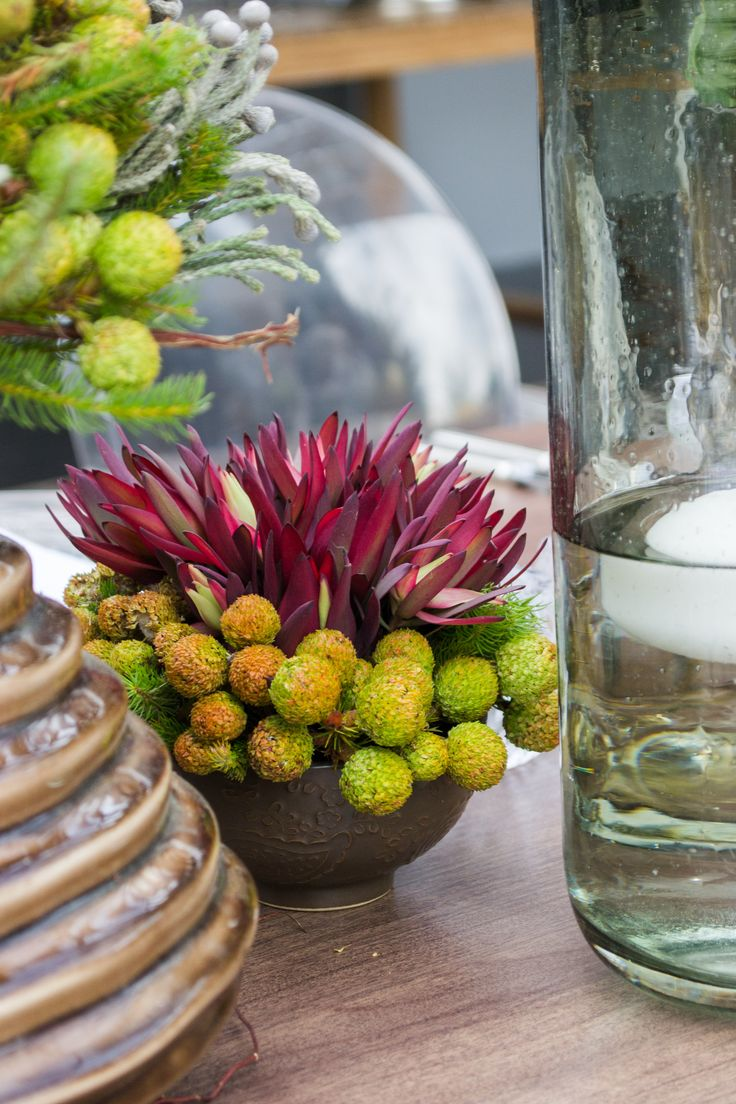 Traditional South African fynbos with protea flower as a floral centre piece arrangement