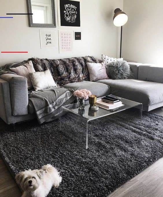 Looking For Some Insanely Cute College Apartment Living Room Ideas These Living Room Decor Ideas Will Transform Your Room Wit