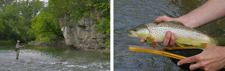 Trout fishing near decorah fun in the great outdodors for Fly fishing spots near me