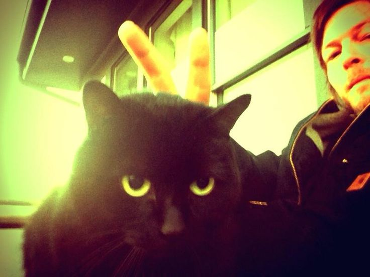 Norman with his cat. Who gives bunny ears to their cat? Honestly. Lol.