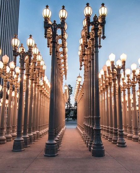 "Chris Burden's ""Urban Light"" at Street lamp installation at the Los Angeles County Museum of Art, Los Angeles"