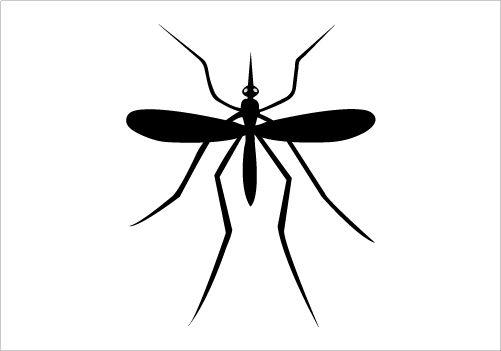Mosquito clipart black and white - photo#14