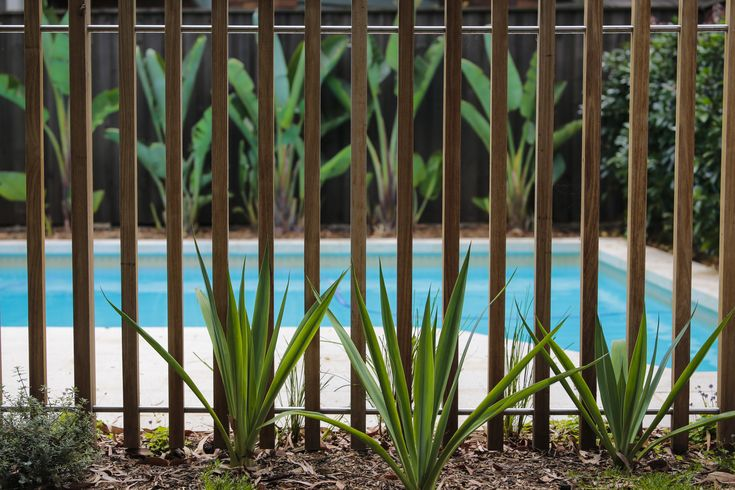 Timber batten pool fence. Formed Gardens.
