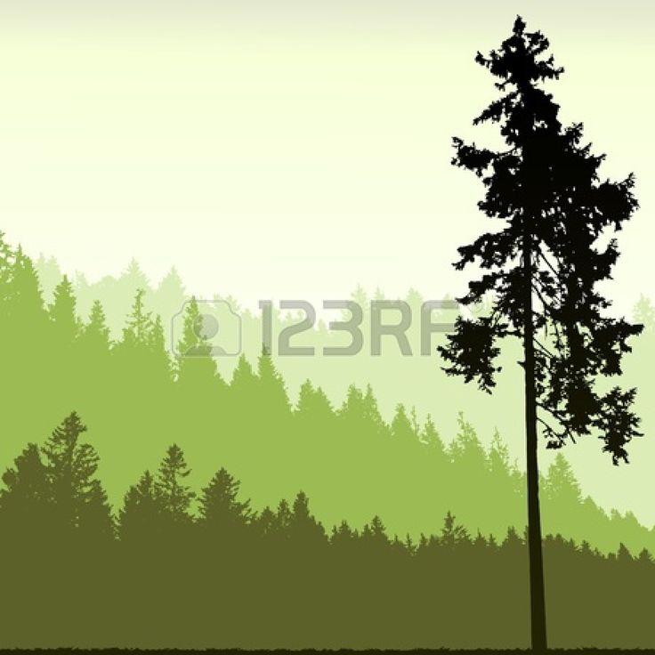 Tall pine tree silhouette.