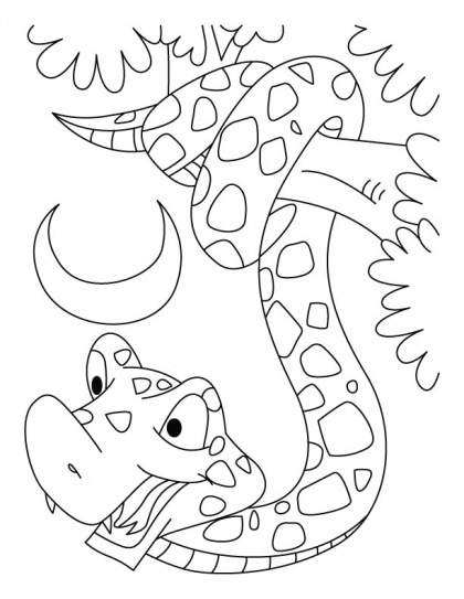 125 best snake coloring pages KIDS images by Ange Wingnut on ...