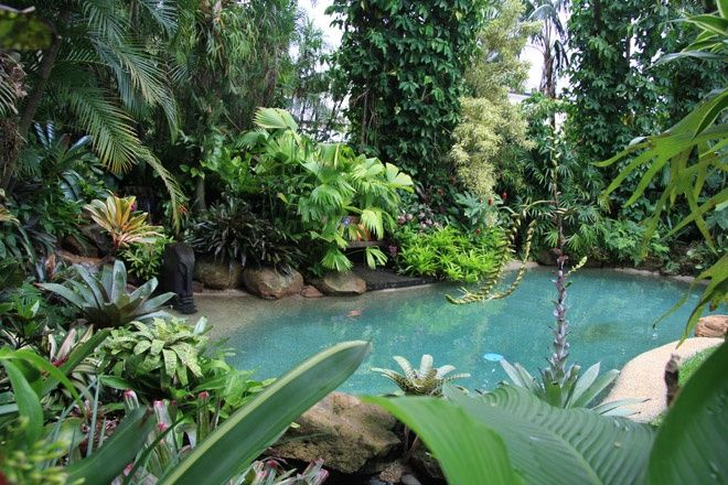 Tropical garden by Dennis Hundscheidt. Stunning garden on a 1/4 acre block.