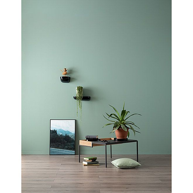 Schoner Wohnen Wandfarbe Designfarbe Erhabenes Agavengrun 2 5 L Feinmatt Agavengrun Designfarbe In 2020 Wall Paint Designs Light Green Walls Beautiful Living