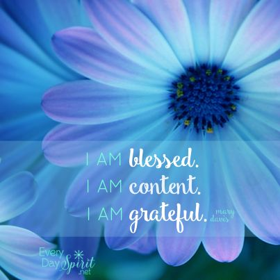 Be grateful for small things. #gratitude For the app of beautiful wallpapers ~ www.everydayspirit.net xo