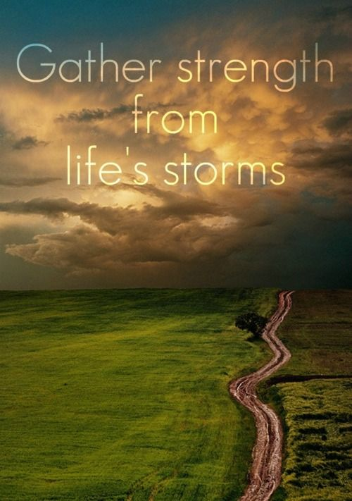 Gather strength from life's storms