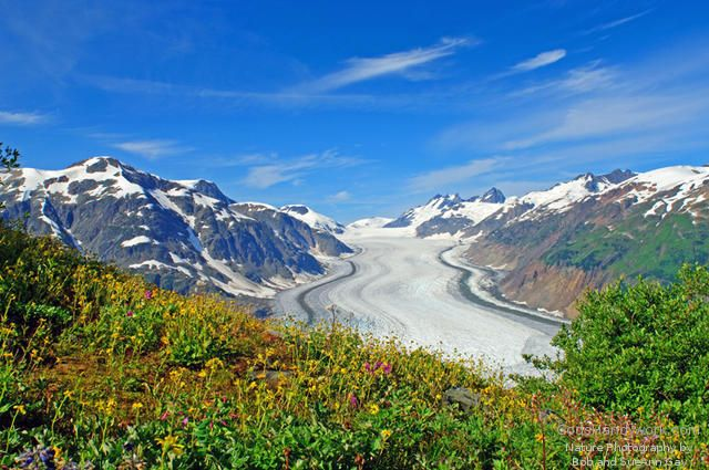 Salmon Glacier  Hyder,Alaska