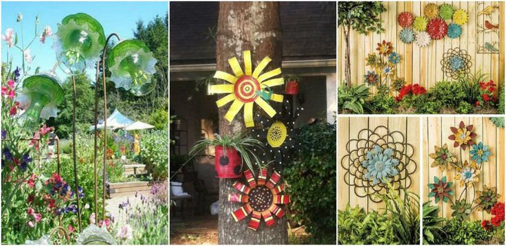 Flori pe care sa le punem in evidenta cu ajutorul proiectelor din gradina