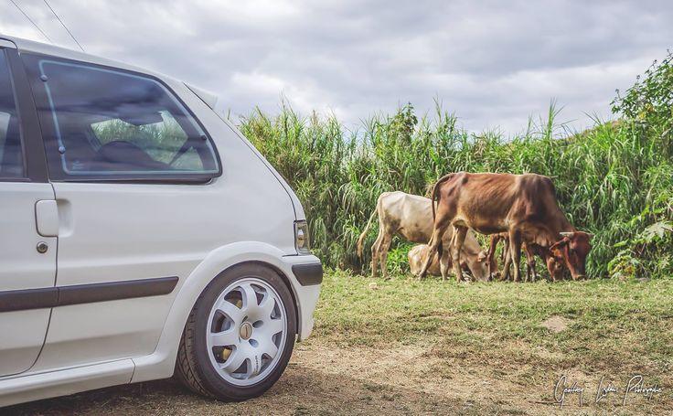 Ruote Speedline Corse Italia modello 2012 RAGNO misure 6,5x15 et 16 mozzo 4x108 Peugeot e Citroen finitura bianco lucido di produzione ITALIANA di alta qualità marchiati originali no repliche o rigenerate. #speedlinecorse #speedlinewheels #white #bianco #madeinitaly #2012ragno #sl675 #wheels #alloywheels #jantes #racingwheels #france #peugeotsport #106rally #rally #history #followus #share #performance #tuning #treviso