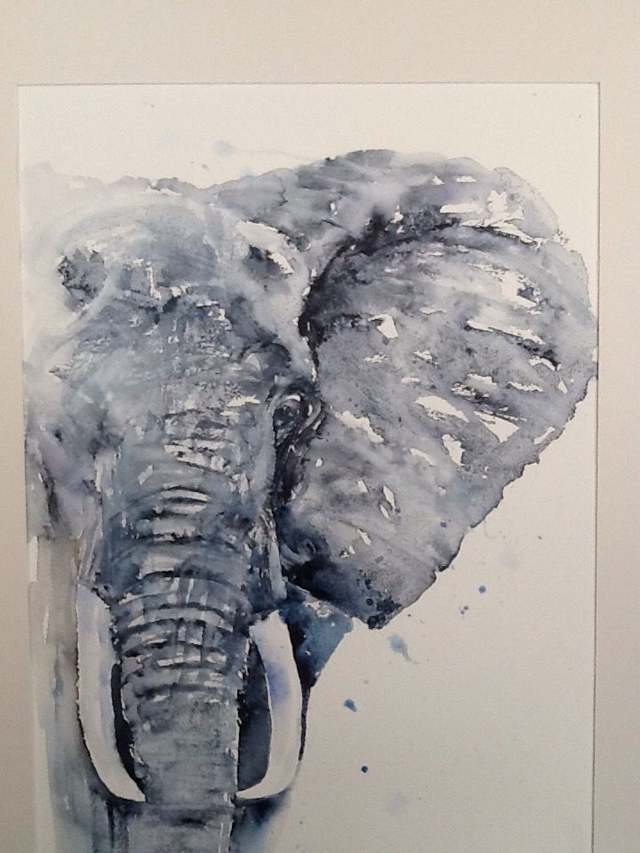 "Elephant watercolour painting L J Holmes artist ""coming through"""