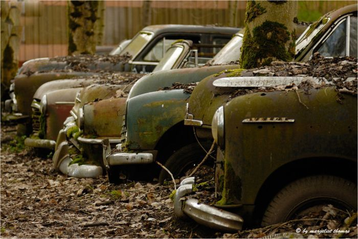 I ❤ old cars!!: Forgotten Beautiful, Rusty Riding, Luv Junk, Classic Cars, Rusty Cars, Junkyard, Old Cars, European Cars, Beautiful Junk I