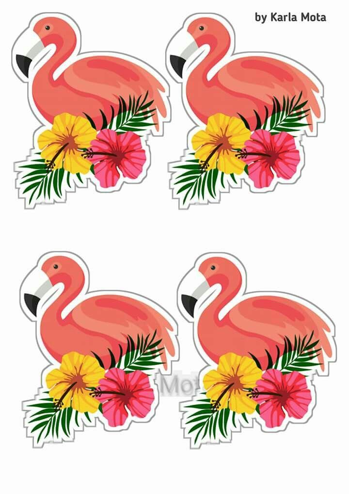 Topers Festa Flamingo Festa Flamingo Topers De Flamingo