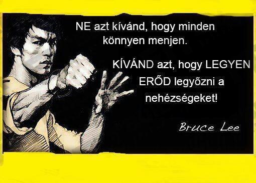 """""""Ne azt kívánd, hogy minden könnyen menjen. Kívánd azt, hogy legyen erőd legyőzni a nehézségeket!"""" (Bruce Lee, 33 éves korában elhunyt amerikai harcművész és színész) - A kép forrása: Sziporka # Facebook"""