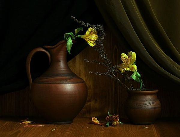 still life photography - Google Search