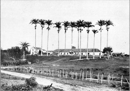 Saracuruna -- Estações Ferroviárias do Estado do Rio de Janeiro - FAZENDA DO ROSÁRIO - Duque de Caxias - RJ