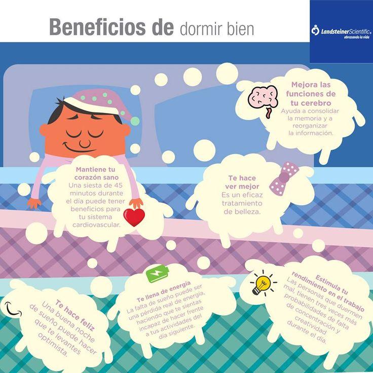 30 best beneficios de dormir bien images on pinterest - Para dormir bien ...