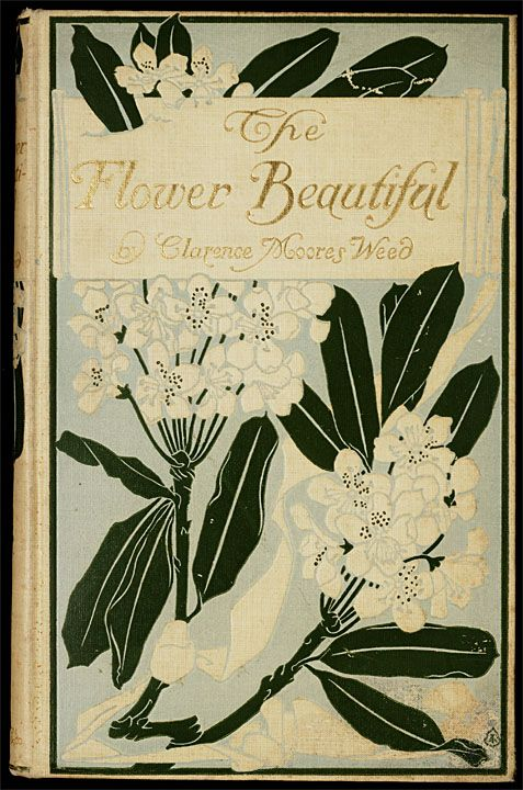 The Flower Beautiful...Clarence Moores Weed  c.1903